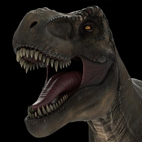 T-rex – 3D model